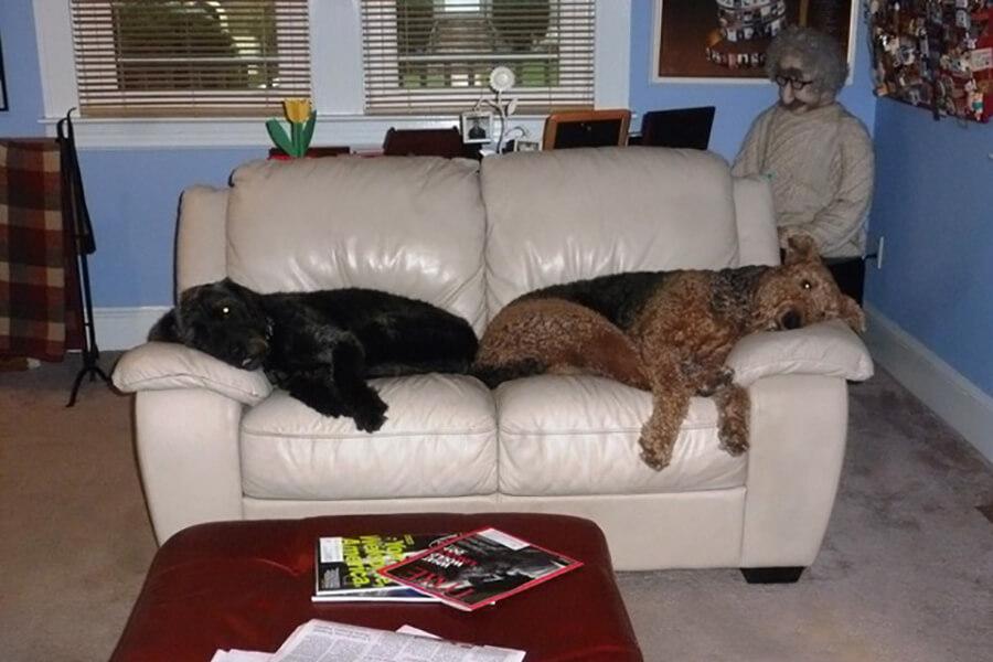 Cabury Hershey Sofa
