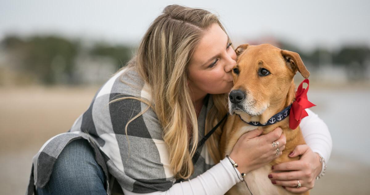 Daisy Dog Story