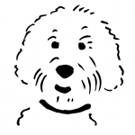 https://dogsimeet.com/wp-content/uploads/cropped-favicon.png