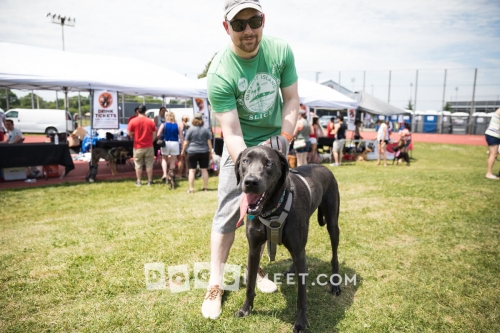 Aria Woofstock