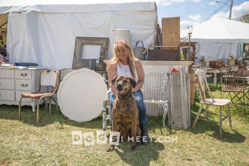 Dogs at Brimfield Antiques Fair