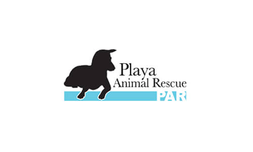 playaanimalrescue